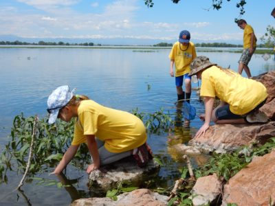 Young Ecologists Campers Collecting and Studying Macroinvertebrates in Barr Lake by Tyler Edmondson